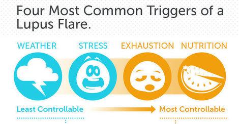 Infographic lupus3