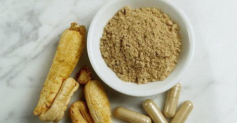 Health tip  understanding probiotics