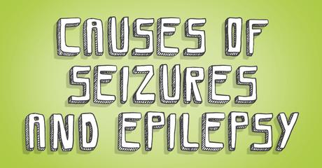 Mht ad causesofseizuresandepilepsy