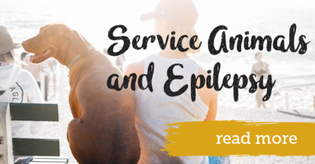 Service animals and epilepsy